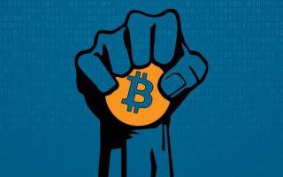 Представители крупного бизнеса создали стартап Bakkt: цель — криптовалюта BTC по 400 тыс.