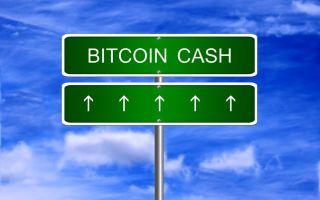 Война миров Bitcoin Cash и Ethereum: что будет с курсом