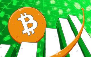 Стоит ли доверять прогнозам о снижении биткоина — анализ онлайн графика за 4 года