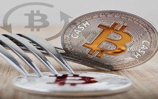 Новости о биткоин кэш: форк повлияет на будущее криптовалюты
