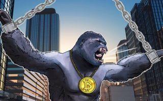 Биткоин обречён? Новости о развитии криптовалюты