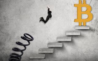 Закон Вайкоффа: вырастет ли курс BTC к USD