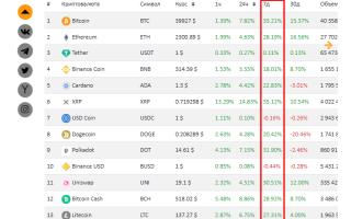 Инвестиции Илона Маска в биткоин: итоги полугода