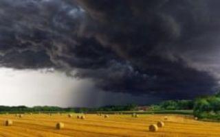 Затишье перед бурей: курс NEO стремительно растёт, что ждёт LTC?