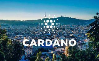 Последние новости о Кардано: создатель проекта о самых важных обновлениях года