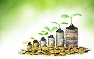 Инвестировать в альткоины выгоднее: 3 стратегии для правильных вложений