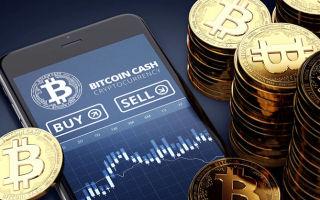 Стоимость биткоин кэш может увеличиться на 155%: последние новости за сегодня
